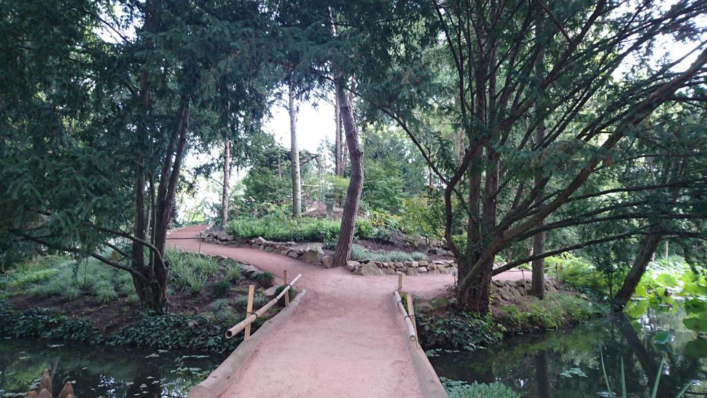 Japanese tea garden by Anonymous---Lucifer