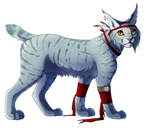 Pirate Lynx ARRR
