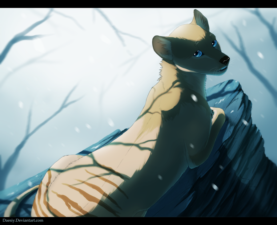 SS: Lycisca by Daesiy