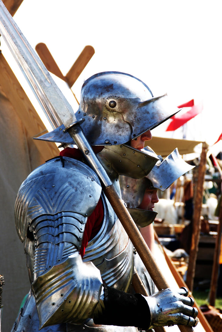 Fantasy Medieval Knight Knight with a Glaive b...