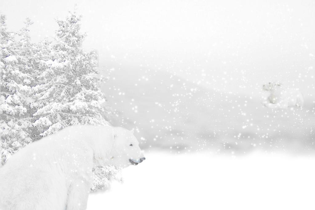 Winter Wonderland by marphilhearts