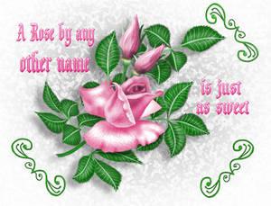 A Rose...