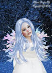 Little Winter Fairy