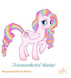 Transcendental Number