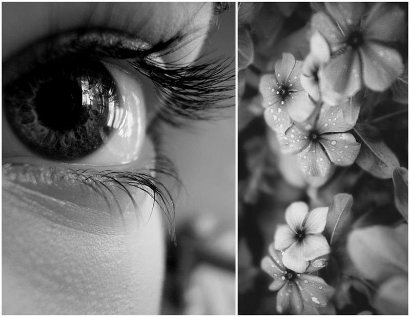 Eye by ankh07