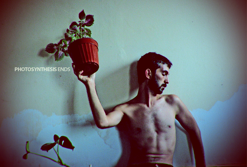 Photosynthesis ends by sakiryildirim