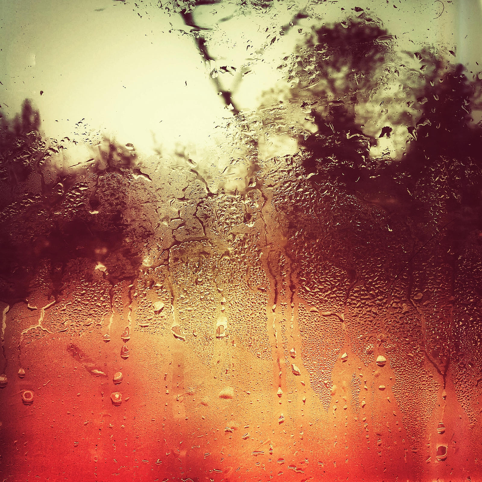 raining by sakiryildirim
