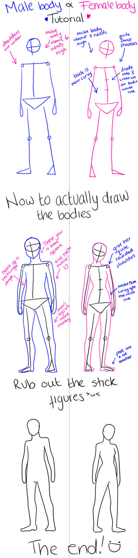 Male and Female body tutorial by MyBananaMusic