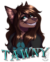 Commission: Tawny by Blitzy-Arts