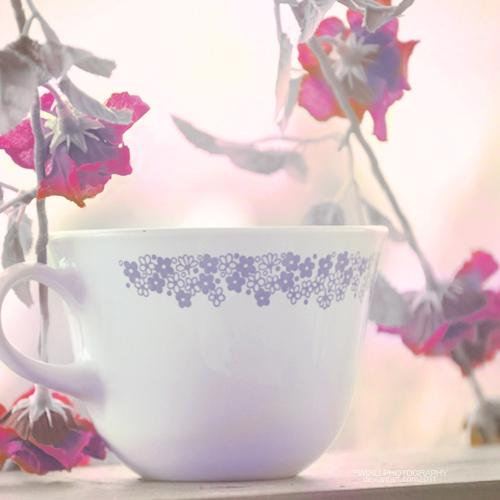 najromanticnija soljica za kafu...caj - Page 5 54f7556e5d5c4e4722415e5a164142c6-d4guc6l