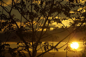 summer sunset--4 by cheah77