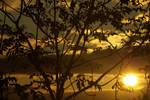 summer sunset--4