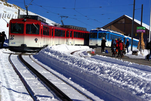 Rigi Train-Switzerland