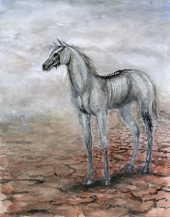 .: devil horse :. by JustBast