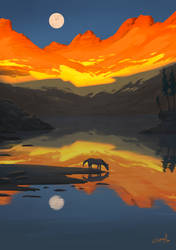 Reflection by Gianara