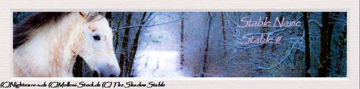 A White Horse Running Through A Snowy Forest by KinderInkSans