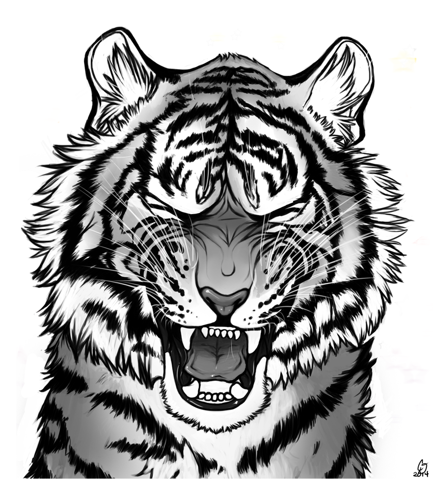 It is a picture of Striking Roaring Tiger Drawing