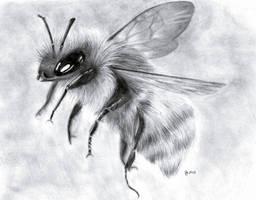 Bumblebee by DarkMasterOfDragons