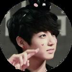 [F2U] BTS Jungkook Icon/Circle thing??