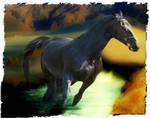 Gift Horse for Vispir by AussieSteve1961