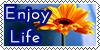 Enjoy life by YulizieLove