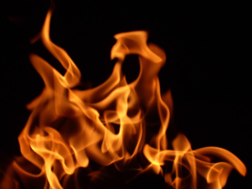 Flames 104: Raptor's Kiss