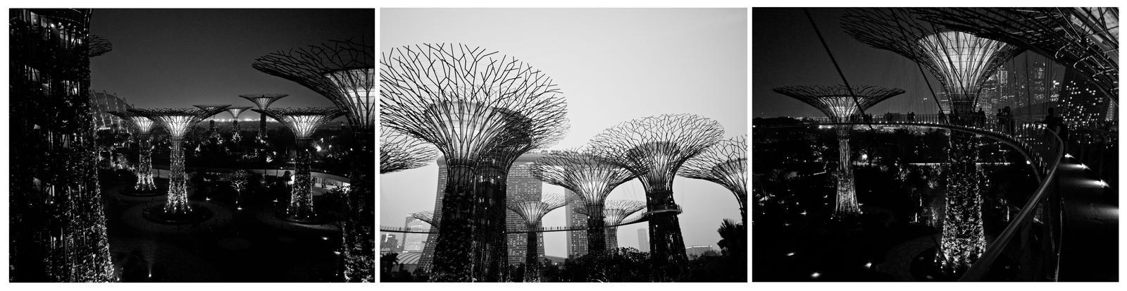 Trees of Steel