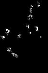 F2U OctoPup Lineart