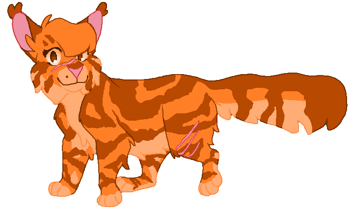 sunpaw____request_by_sinnam0nroll-dcjv0au.png