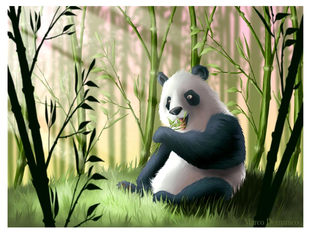 Bamboo by albundyland