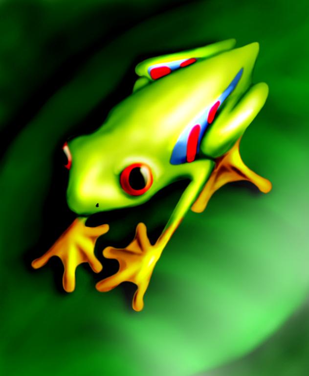 Tree Frog by albundyland