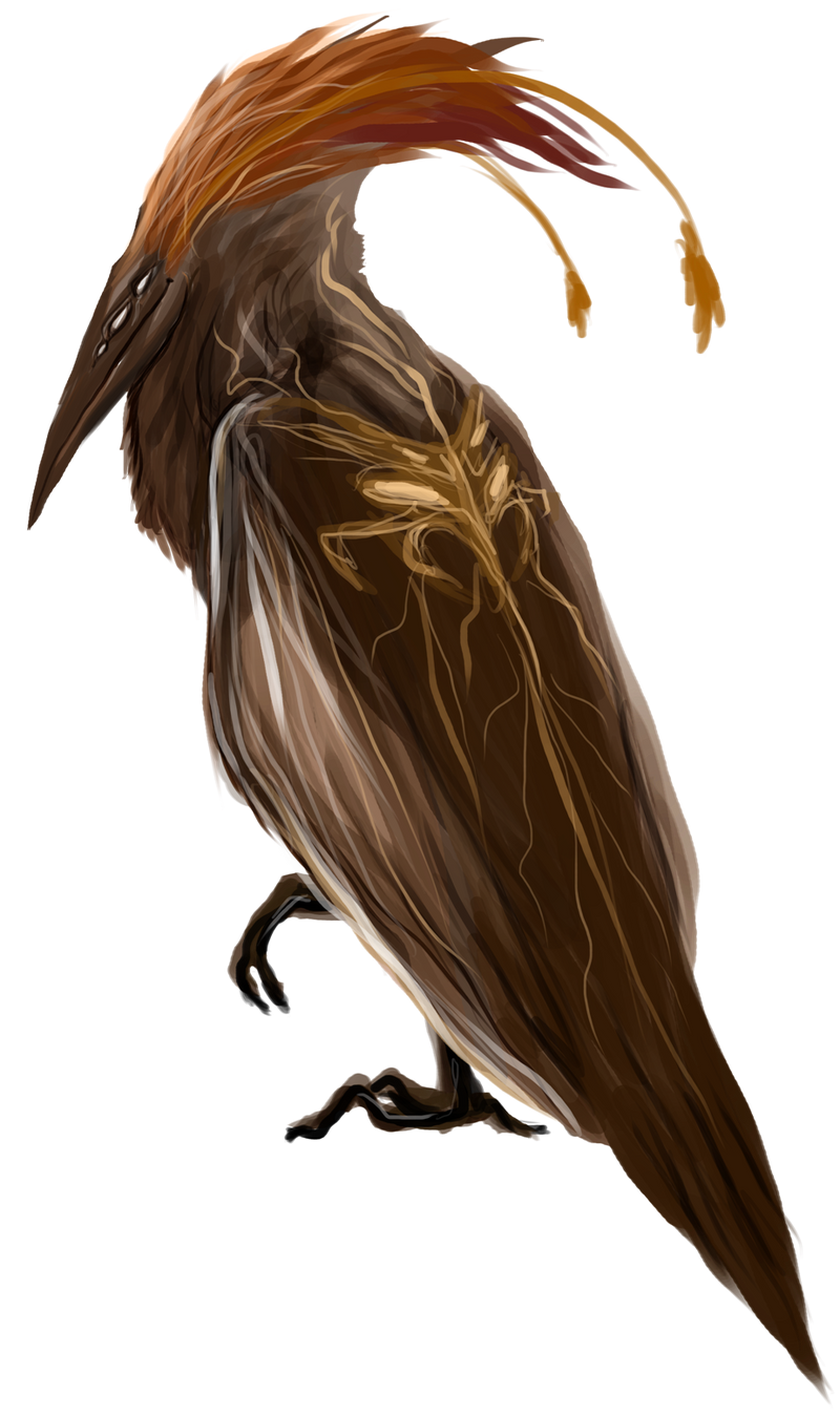 Ptichco by Dimenran