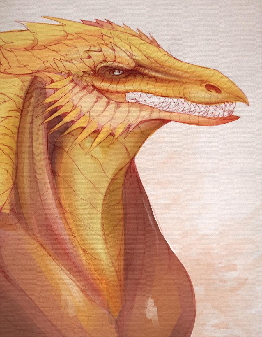 Dragon by Dimenran