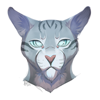The Sharp-Eyed Jayfeather by Coeuralma