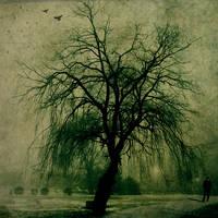 Mr. Lonely by fibulamim