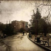 Rain by fibulamim