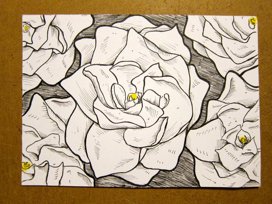 Traditional Flower Line Drawing : Gardenia sketch by jmdragunas on deviantart