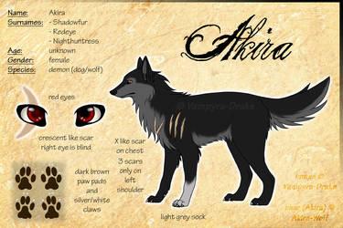Akira - Sheet 1.0 [OLD ART] by Akira-Wolf