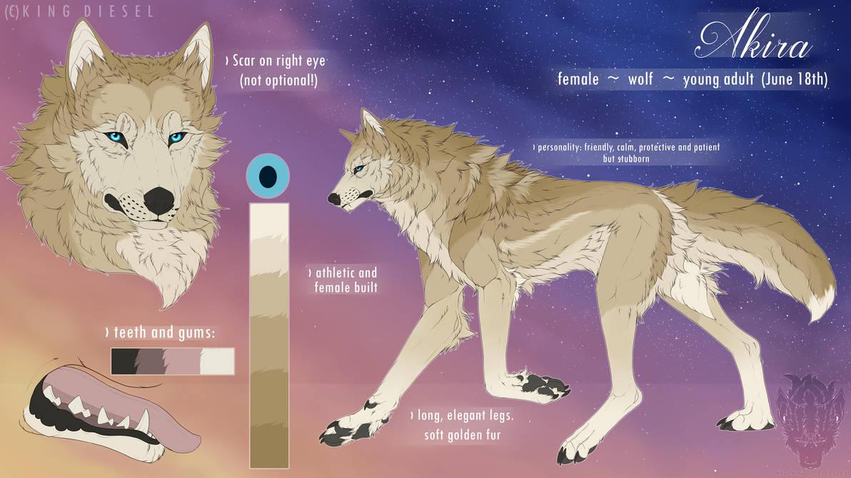 Reference Sheet Akira by Akira-Wolf