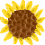 Sunflower icon 1 by MaisArtCraft