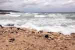 Jamaican Beach 13