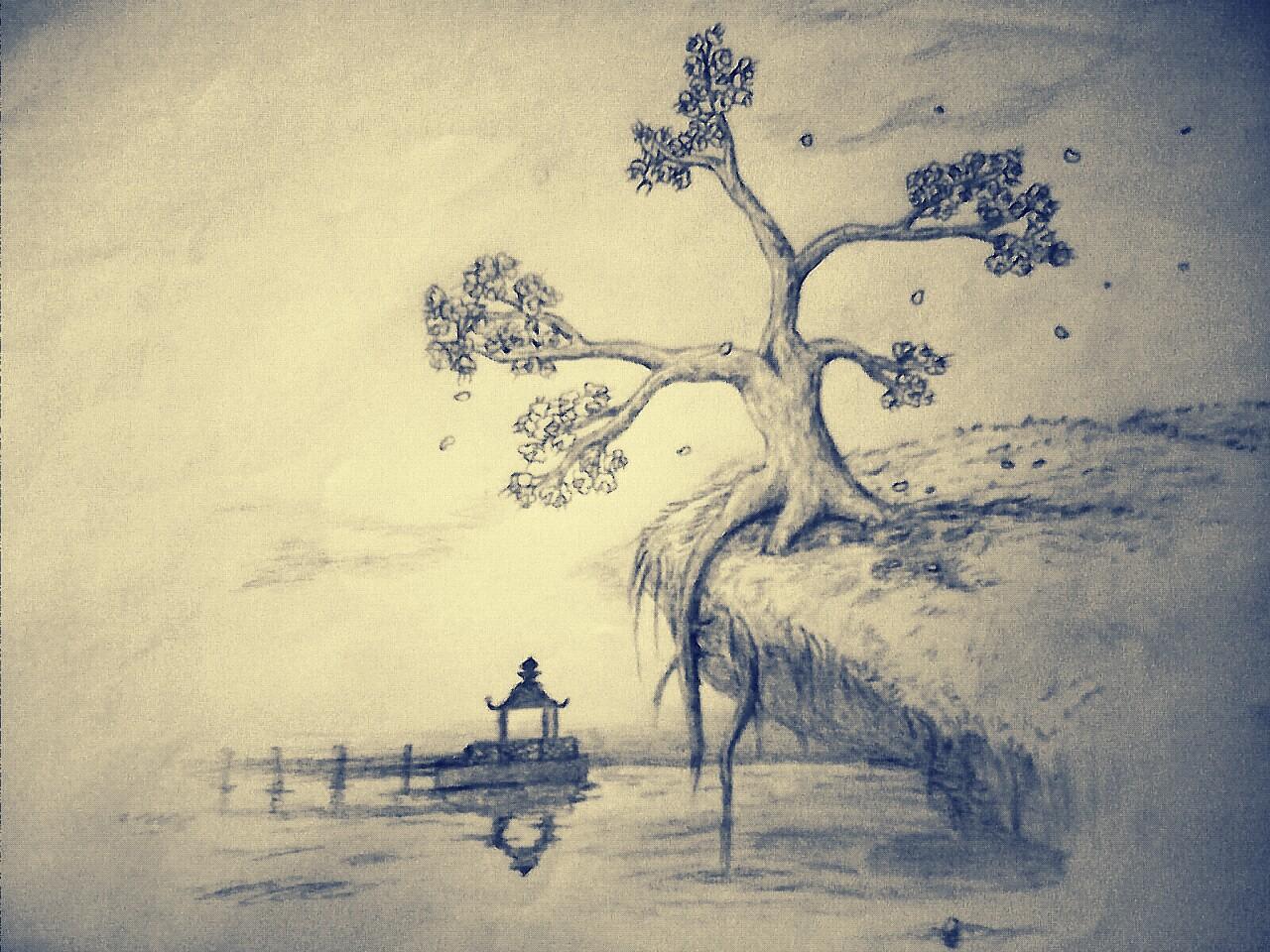 Cherry blossoms tree sketch by akshayrajchovhan on deviantart