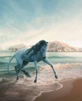 Lost at Sea by Hioderro