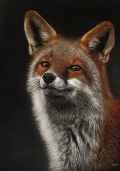 Fox Final