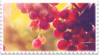 red purple grapes stamp by GlacierVapour