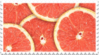 grapefruit citrus stamp