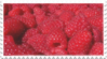 raspberries fruit stamp by GlacierVapour