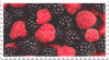 mixed berries stamp