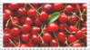 red cherries fruit stamp by GlacierVapour
