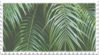 green plant aesthetic stamp 1
